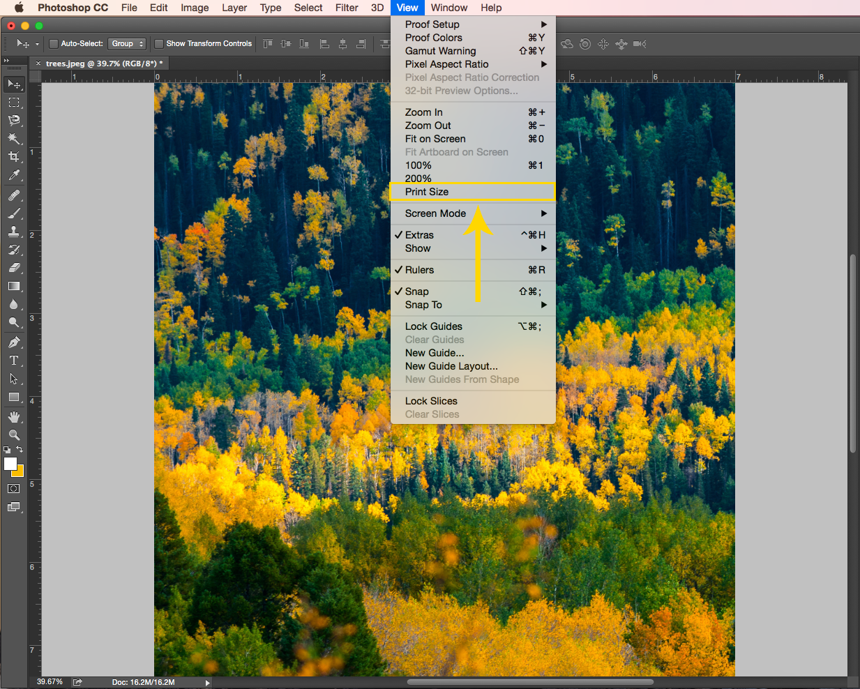 How to View a Photo at Print Size: From the menu click View and then Print Size