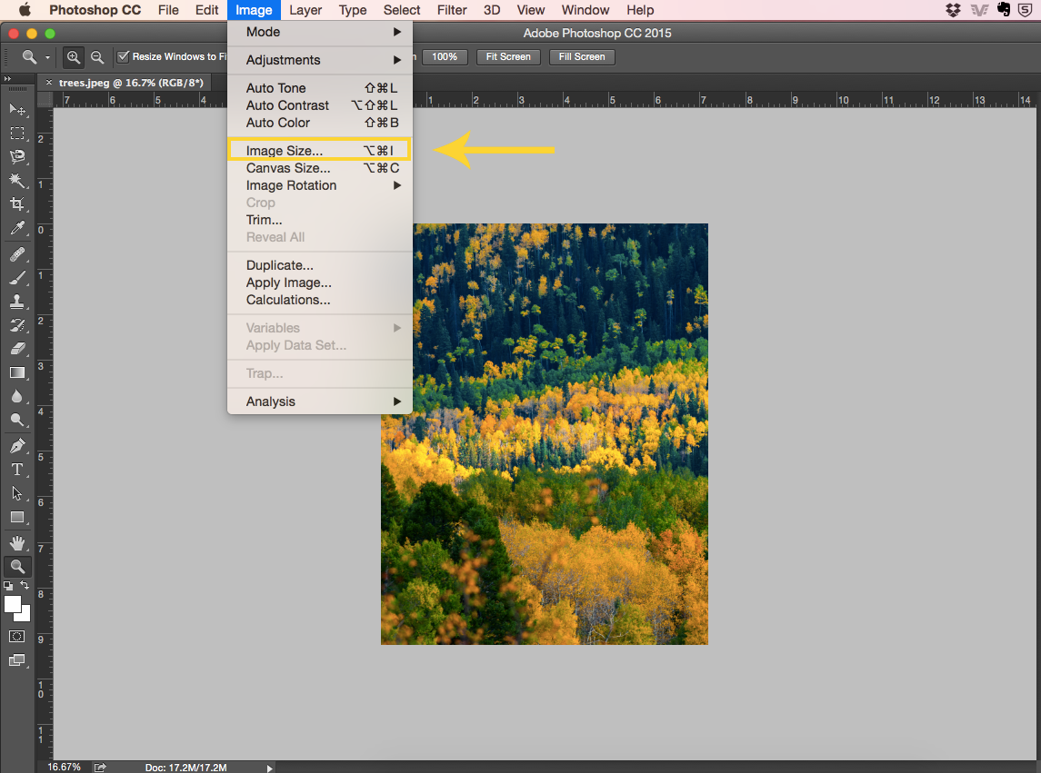 How to View a Photo at Print Size: click Image and then Image Size