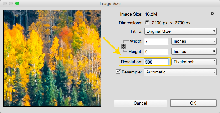 How to View a Photo at Print Size: Set resolution in Pixels/Inch (PPI) to 300